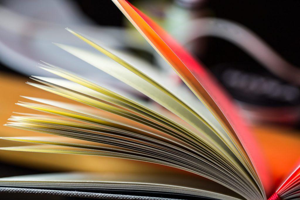 bpio.consulting lektorat korrekturlesen fachbücher SharePoint project projectserver Fachartikel